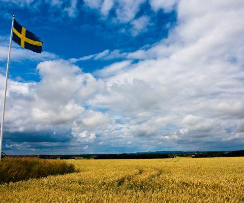 Re:branding the Swedish image