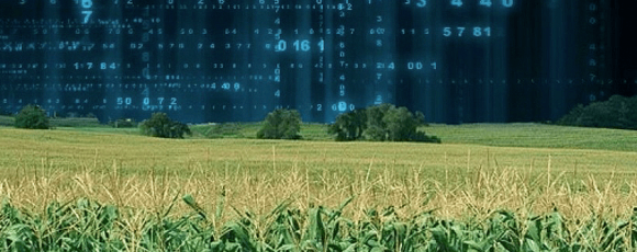 big data feeding world