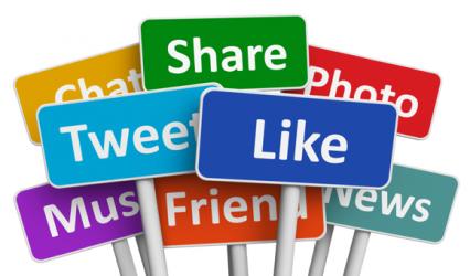 What makes an online activist?