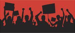 New Media Activism Insights