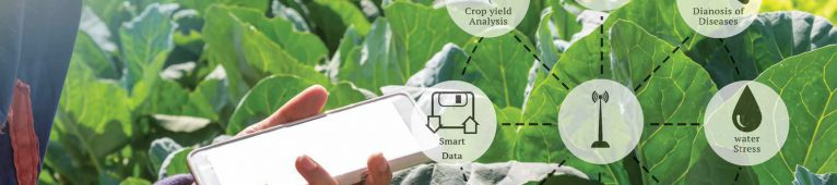 Agriculture and the Digital Revolution