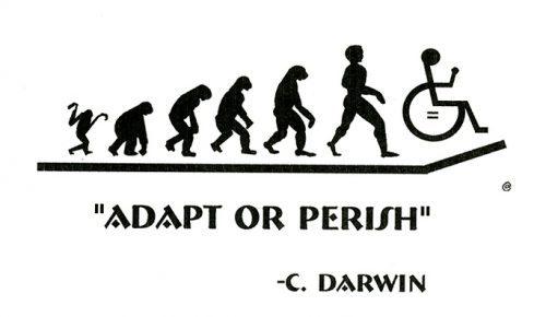 Disability Activism